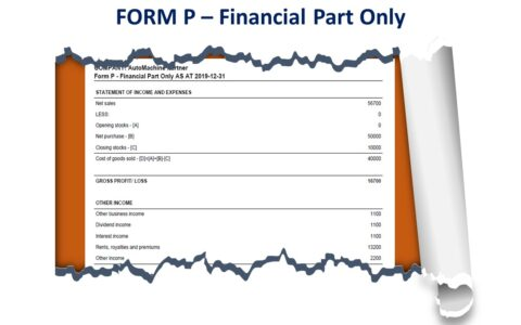 Form P - Financial Part Only