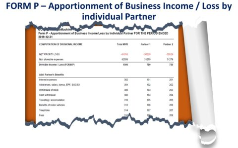 Form P - Apportionment of Business Income/Loss by Individual Partner